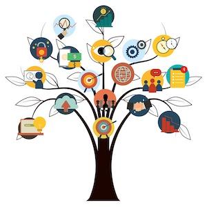 Cykl spotkań doradztwa dla uczniów szkół średnich